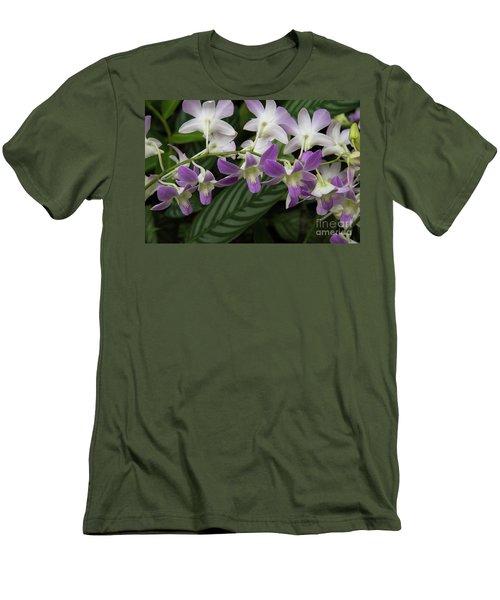 Orchid Beauty Men's T-Shirt (Athletic Fit)