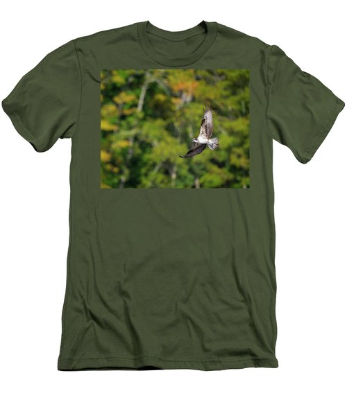 Osprey Men's T-Shirt (Slim Fit) by Bill Wakeley