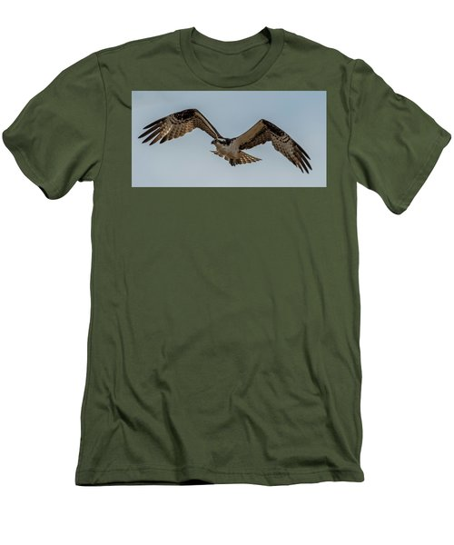 Osprey Flying Men's T-Shirt (Slim Fit) by Paul Freidlund