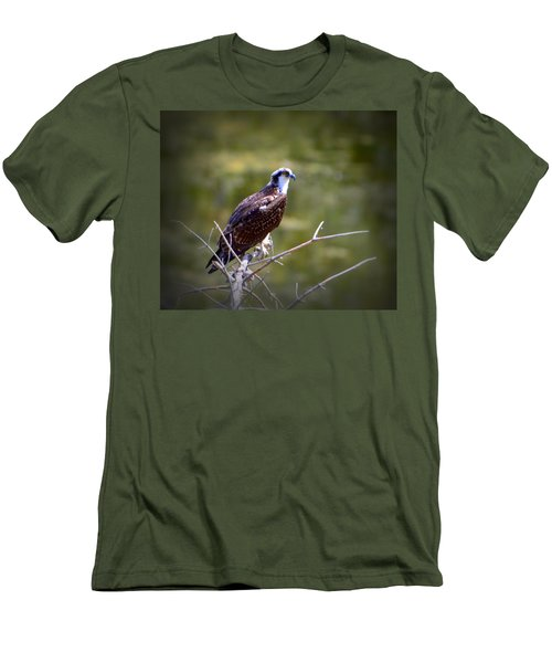 Osprey In Wait Men's T-Shirt (Athletic Fit)