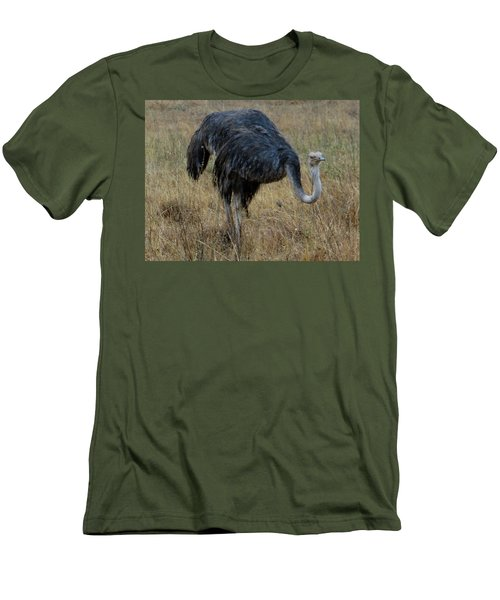 Ostrich In The Grass 1 Men's T-Shirt (Athletic Fit)