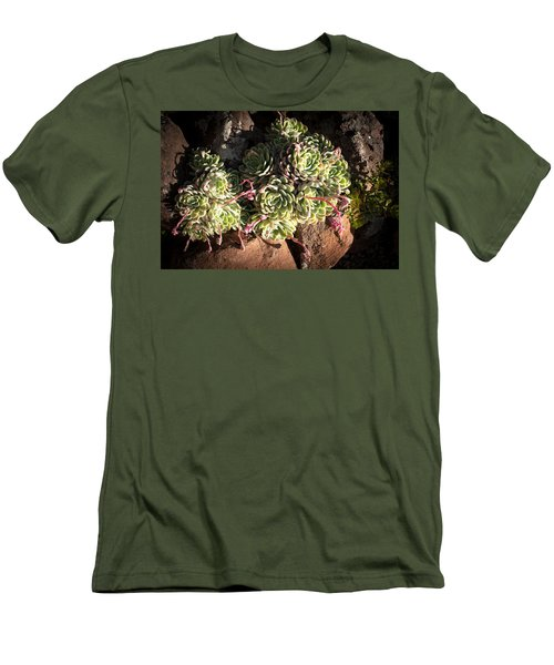 Men's T-Shirt (Slim Fit) featuring the photograph Out Door Succulents by Catherine Lau