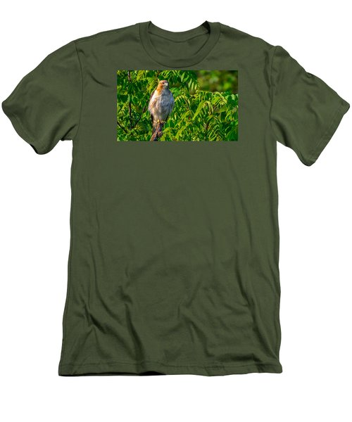 Out On A Limb 3 Men's T-Shirt (Slim Fit) by Brian Stevens