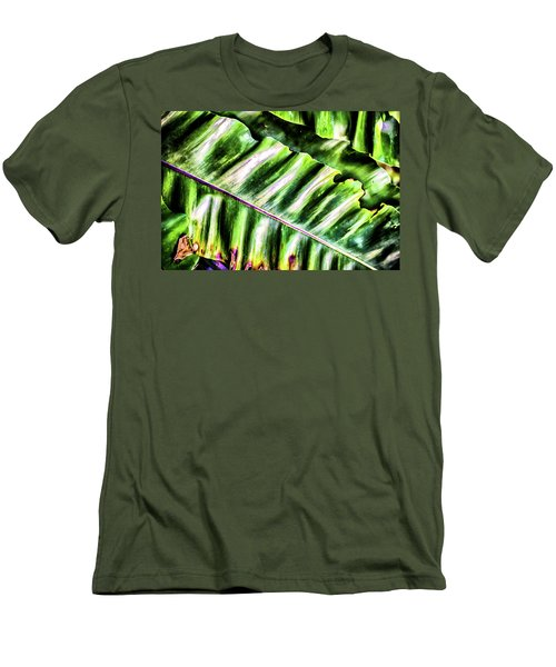 Palm Fronds Up Close Men's T-Shirt (Athletic Fit)