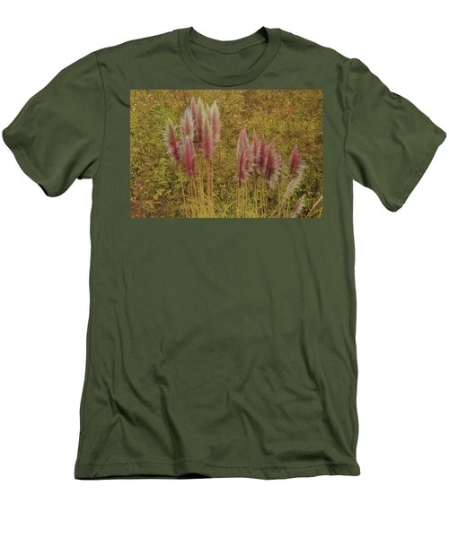 Pampas Grass Men's T-Shirt (Athletic Fit)