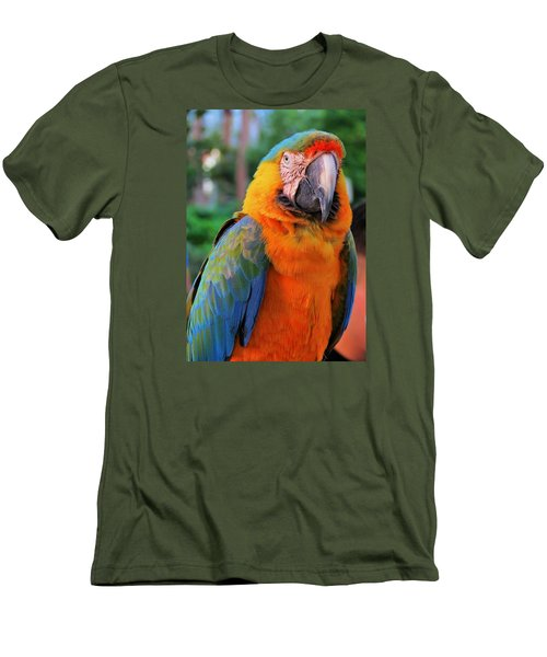 Parrot 3 Men's T-Shirt (Athletic Fit)