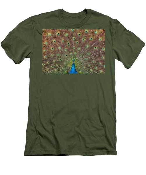 Peacock Fanfare Men's T-Shirt (Athletic Fit)