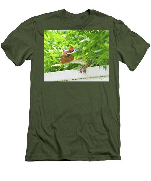 Peek-a-boo Gray Squirrel Men's T-Shirt (Slim Fit) by Kathy Kelly