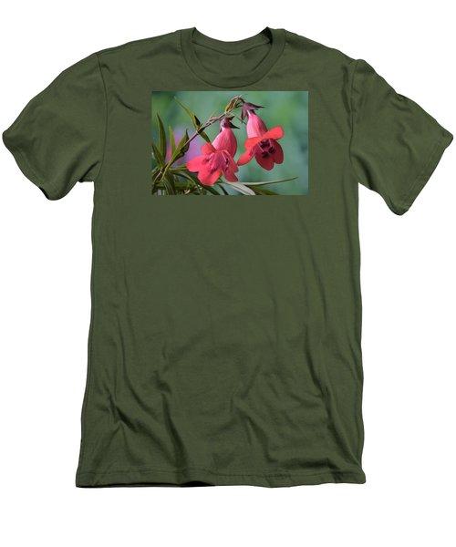 Penstemon Men's T-Shirt (Slim Fit) by Terence Davis