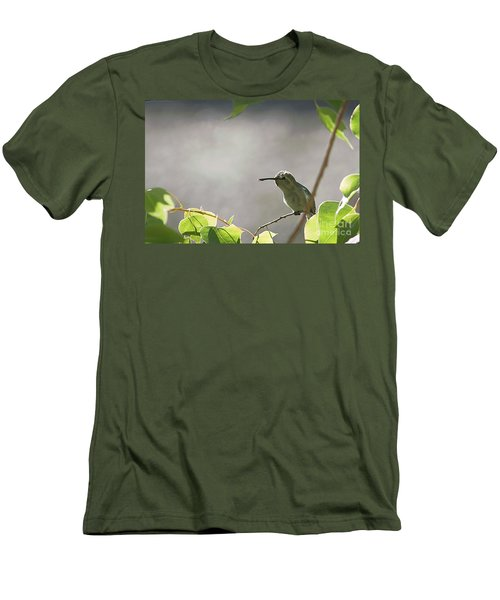 Perched Hummer Men's T-Shirt (Slim Fit) by Anne Rodkin