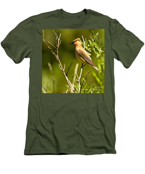 Perfectly Perched Men's T-Shirt (Slim Fit) by Adam Jewell