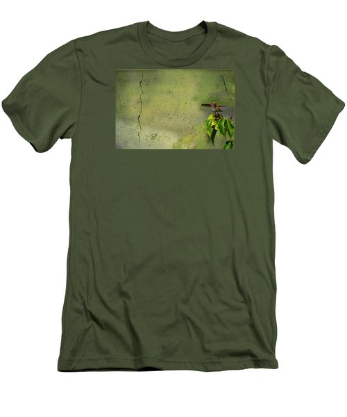 Plate 087 - Hummingbird Grunge Series Men's T-Shirt (Athletic Fit)