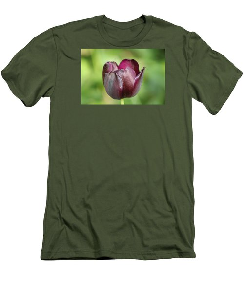 Plum Tulip Men's T-Shirt (Athletic Fit)