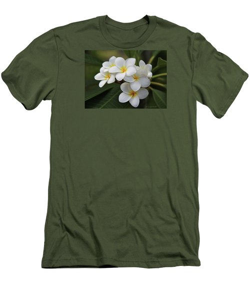 Plumeria - Golden Hearts Men's T-Shirt (Athletic Fit)