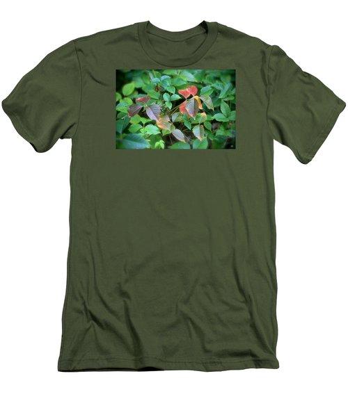 Poison Ivy In August Men's T-Shirt (Slim Fit)