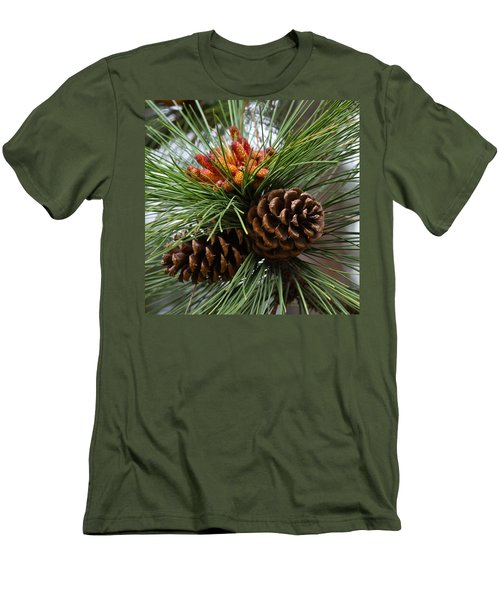 Ponderosa Pine Cones Men's T-Shirt (Athletic Fit)