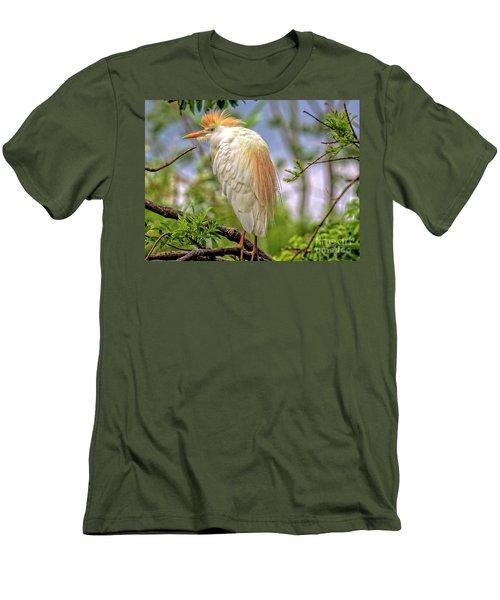 Portrait Of A Cattle Egret Men's T-Shirt (Athletic Fit)