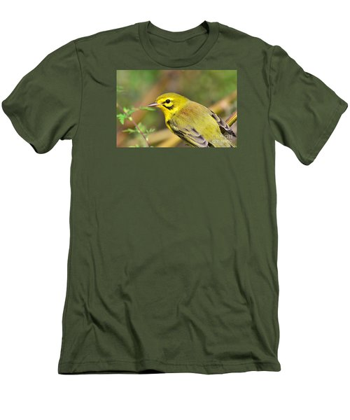Prairie Warbler Men's T-Shirt (Slim Fit) by Kathy Gibbons