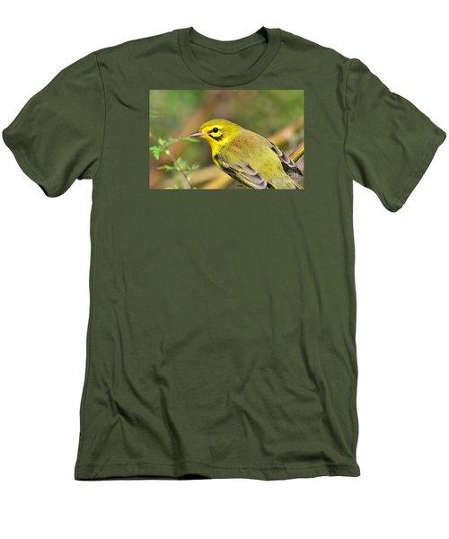 Prairie Warbler Men's T-Shirt (Slim Fit)