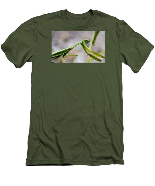 Praying Mantis Looking Men's T-Shirt (Slim Fit) by Jonny D
