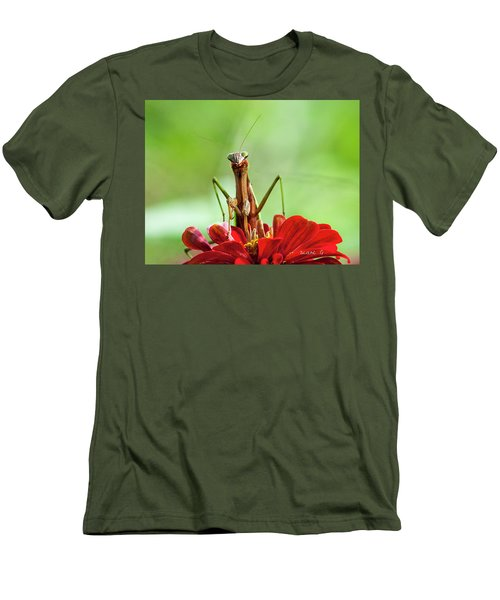 Praying Mantis On Zinnia Men's T-Shirt (Athletic Fit)