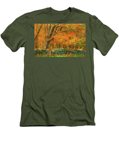 Preuss Road Stone Wall Men's T-Shirt (Athletic Fit)