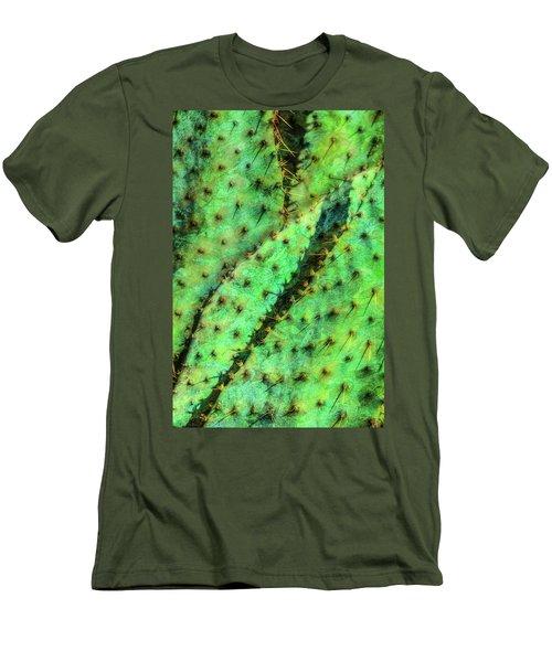 Prickly Men's T-Shirt (Slim Fit) by Paul Wear