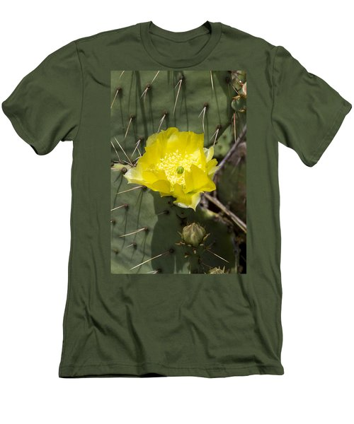 Prickly Pear Cactus Blossom - Opuntia Littoralis Men's T-Shirt (Athletic Fit)
