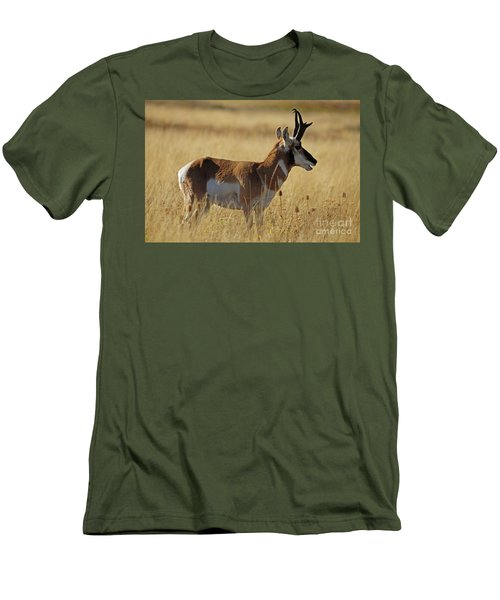 Pronghorn Antelope Men's T-Shirt (Slim Fit) by Cindy Murphy - NightVisions