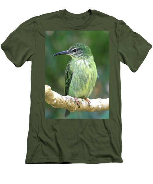 Purple Honeycreeper Female Men's T-Shirt (Athletic Fit)