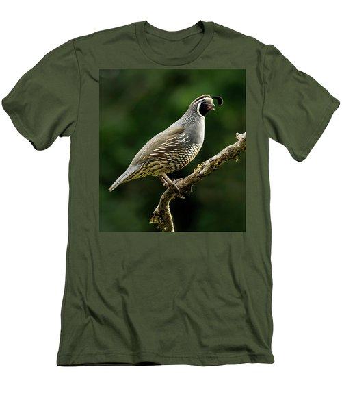 Quail  Men's T-Shirt (Slim Fit) by Inge Riis McDonald
