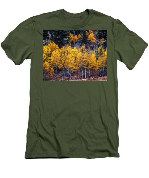 Aspen In Fall Colors In Eleven Mile Canyon Colorado Men's T-Shirt (Slim Fit) by John Brink