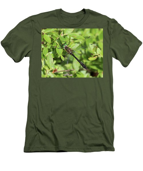 Racket-tailed Emerald  Men's T-Shirt (Athletic Fit)