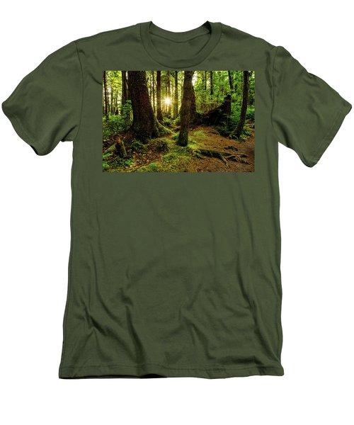 Rainforest Path Men's T-Shirt (Slim Fit) by Chad Dutson