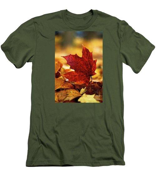Red Autumn Men's T-Shirt (Slim Fit) by Gary Bridger