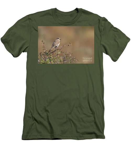 Red-backed Shrike Juv. - Lanius Collurio Men's T-Shirt (Slim Fit) by Jivko Nakev