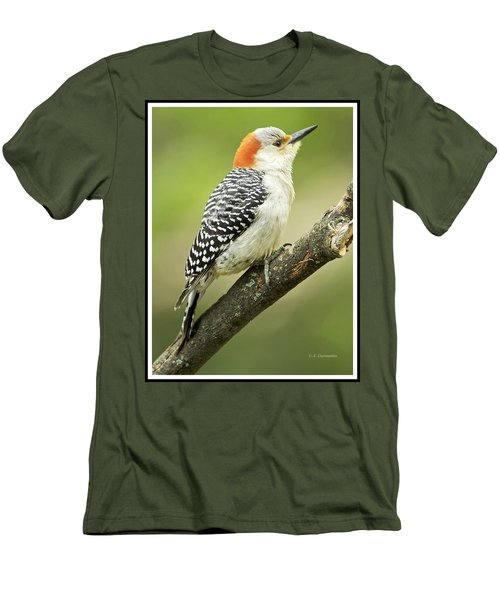 Red Bellied Woodpecker, Female On Tree Branch Men's T-Shirt (Slim Fit) by A Gurmankin