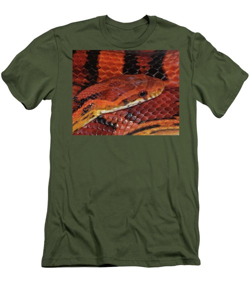 Red Eyed Snake Men's T-Shirt (Slim Fit) by Patricia McNaught Foster