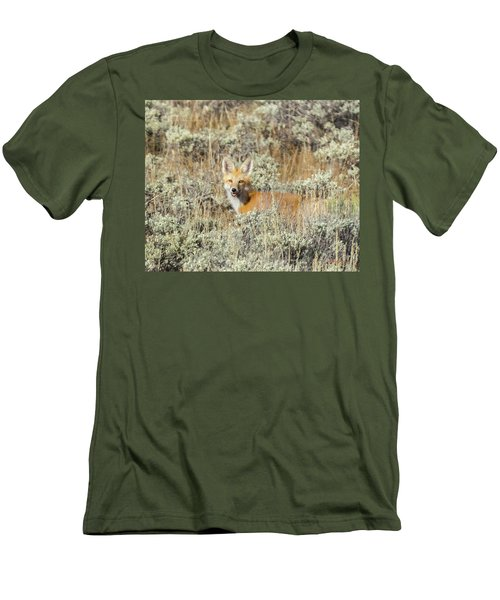 Red Fox In Sage Brush Men's T-Shirt (Athletic Fit)