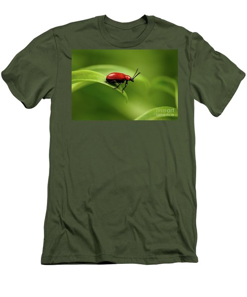 Red Scarlet Lily Beetle On Plant Men's T-Shirt (Slim Fit) by Sergey Taran