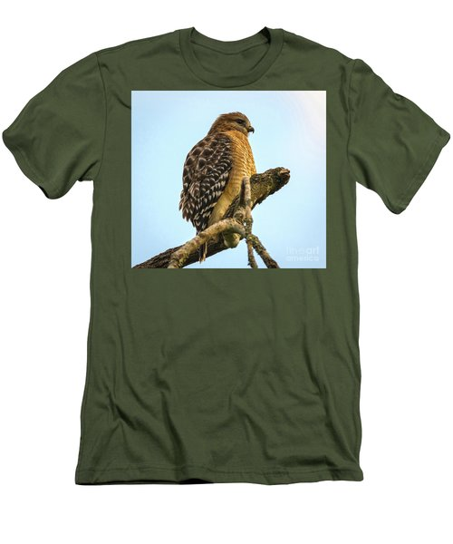 Red-shouldered Hawk - Buteo Lineatus Men's T-Shirt (Athletic Fit)