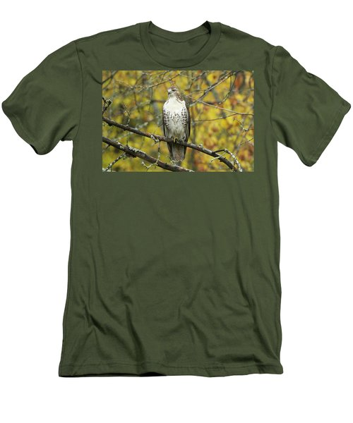Red Tail Hawk 9887 Men's T-Shirt (Slim Fit) by Michael Peychich