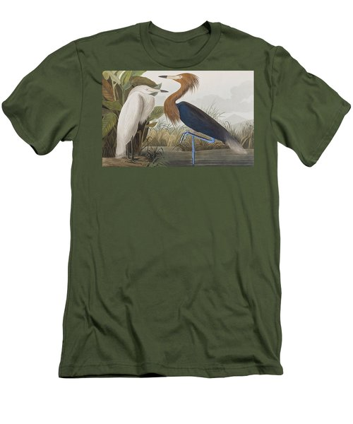 Reddish Egret Men's T-Shirt (Slim Fit) by John James Audubon