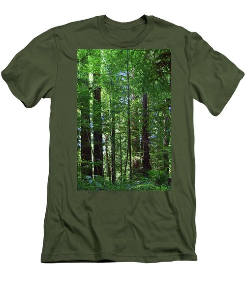 Redwoods No. 3-1 Men's T-Shirt (Athletic Fit)