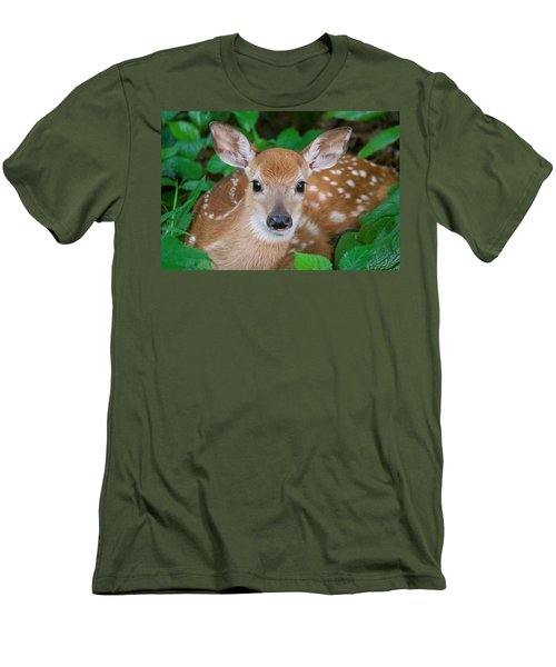 Resting Fawn Men's T-Shirt (Athletic Fit)