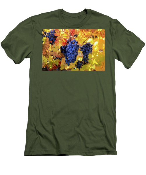 Rich Fall Colors With Grapes Men's T-Shirt (Athletic Fit)