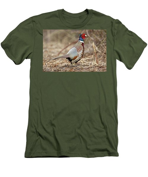 Ring-necked Pheasant Stony Brook New York Men's T-Shirt (Athletic Fit)