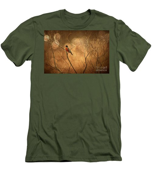 Robin Men's T-Shirt (Slim Fit) by Lois Bryan