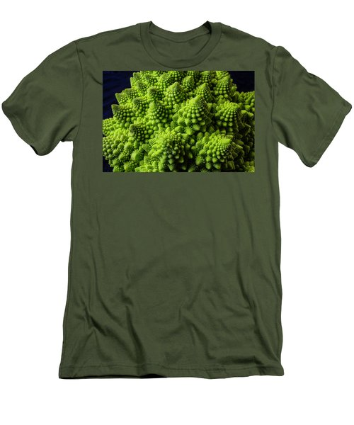 Romanesco Broccoli Men's T-Shirt (Slim Fit) by Garry Gay