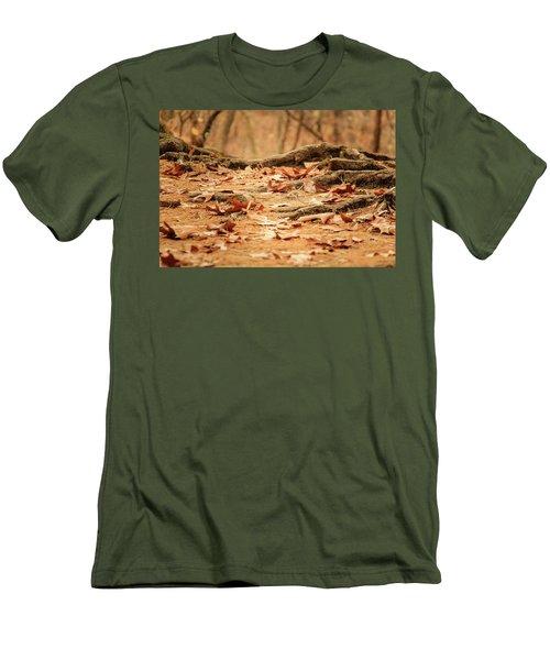 Roots Along The Path Men's T-Shirt (Slim Fit)
